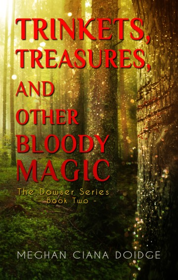 Trinkets (etc) book cover